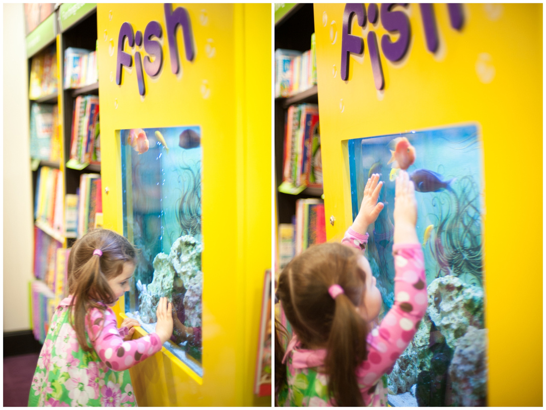 a visit to the book store, checking out the fishes in Salisbury Waterstones shop