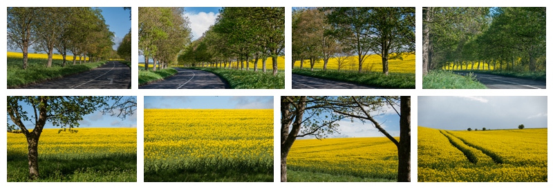 The road between Tilshead and West Lavington, Wiltshire by photographer Barbara Leatham